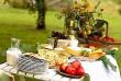 Советы по организации пикника