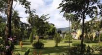 Идеальный отдых в отеле Duangjitt Resort Spa