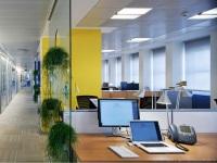 Виды короткого отдыха в офисе